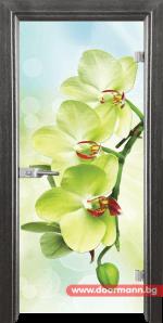 Стъклена врата модел Print 13-3 – Сив кестен